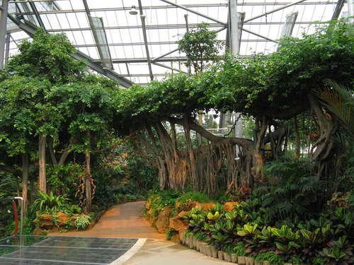 景观观赏温室
