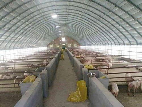 畜牧养殖温室